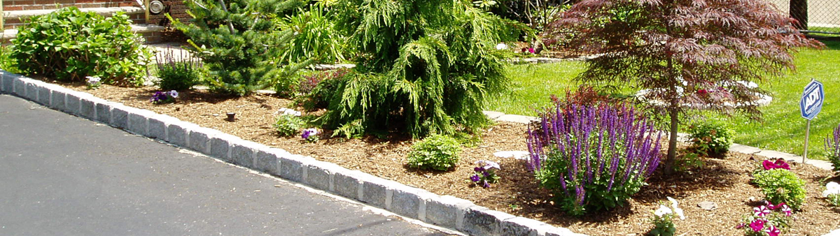 landscaping in Bergne County