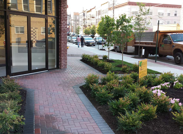 commercial landscaping and Hardscaping in Bergen County