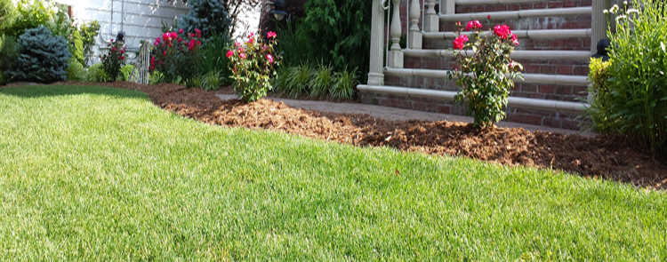 lawn care banner image bergen county