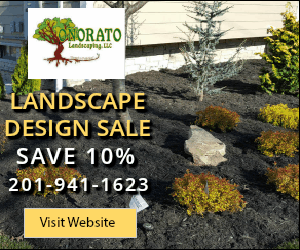 10% off Landscape Design