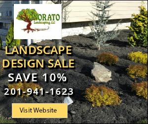 10% off Landscape Design