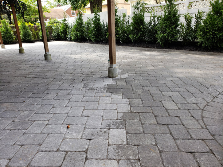 """Hardscaping and a """"green fence"""" in Palisades Park NJ"""
